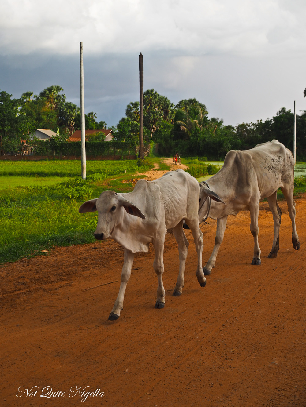 3 days in Siem Reap Cambodia