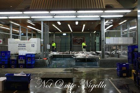 sydney fish market tour 12