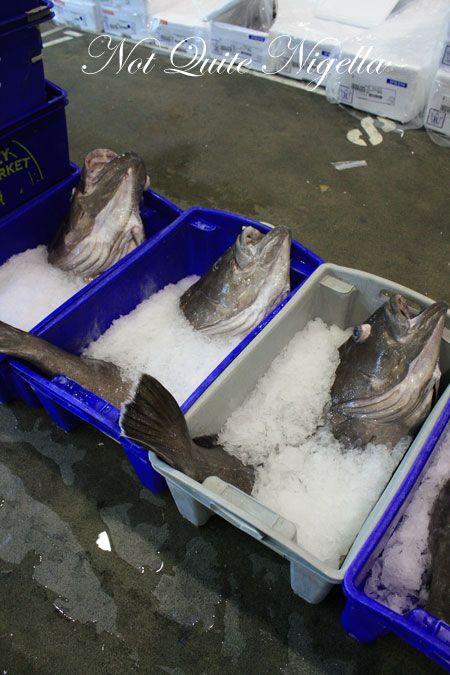 sydney fish market tour 13