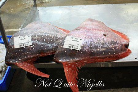 sydney fish market tour 15