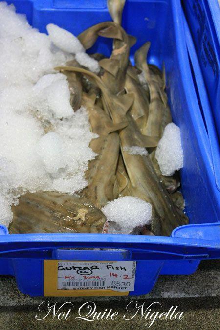 sydney fish market tour 18