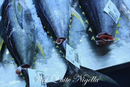 sydney fish markets 28