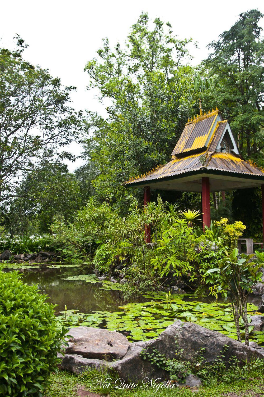 xiahuangbanna tropical botanical garden-1