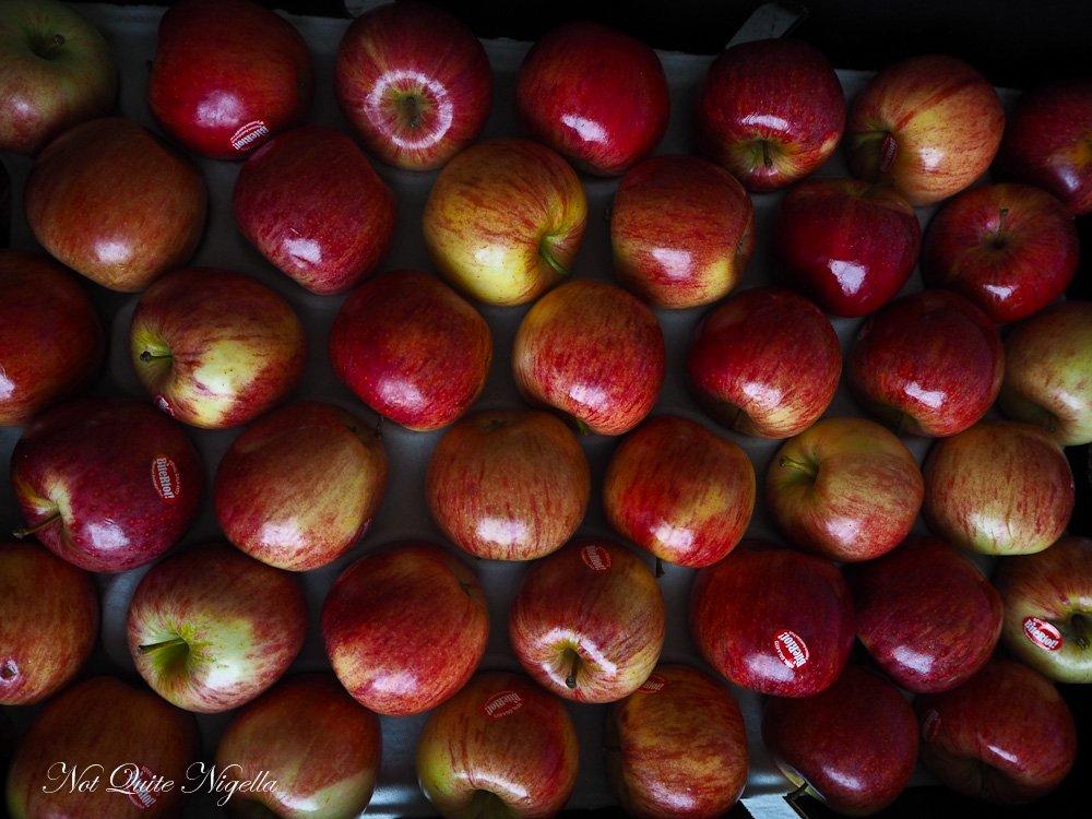 Apple Flower Tart