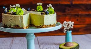 Sublime Avocado Coconut Cheesecake