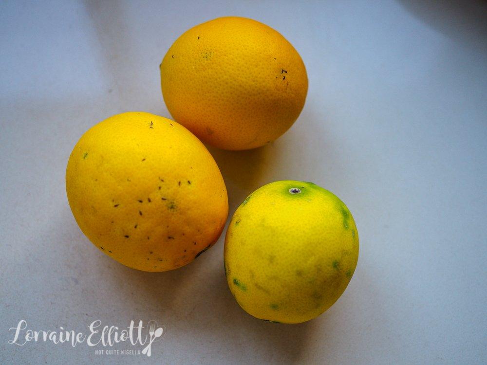 Avocado & Finger Lime Toast
