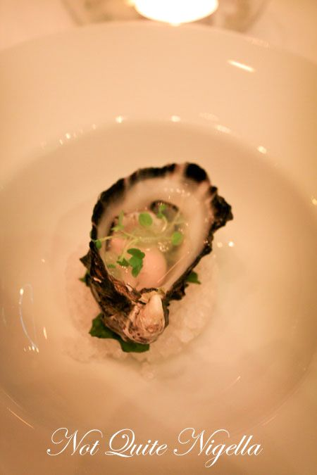 becasse degusation oyster
