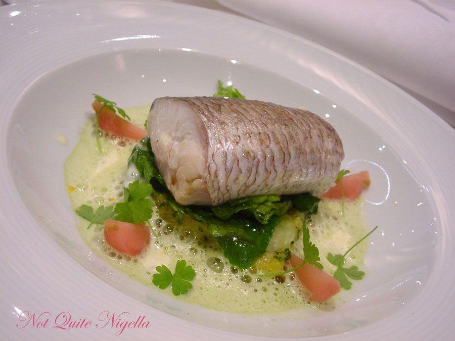 Becasse Sydney- Fish
