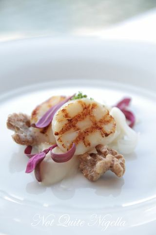 Grilled Sea Scallops, cauliflower, pickled salsify, salted walnuts ...