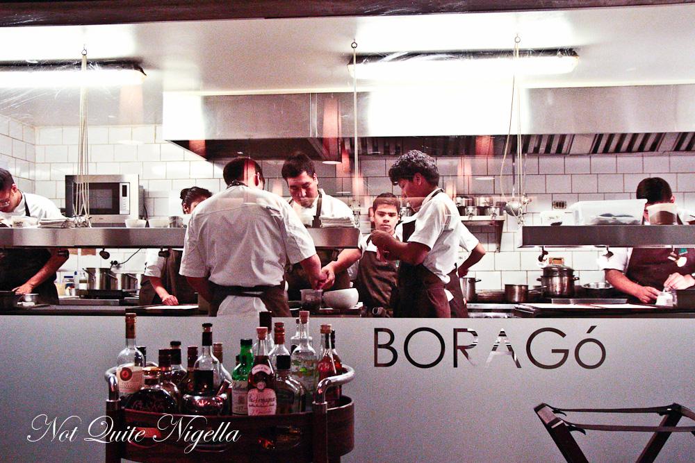 Borago Santiago Chile