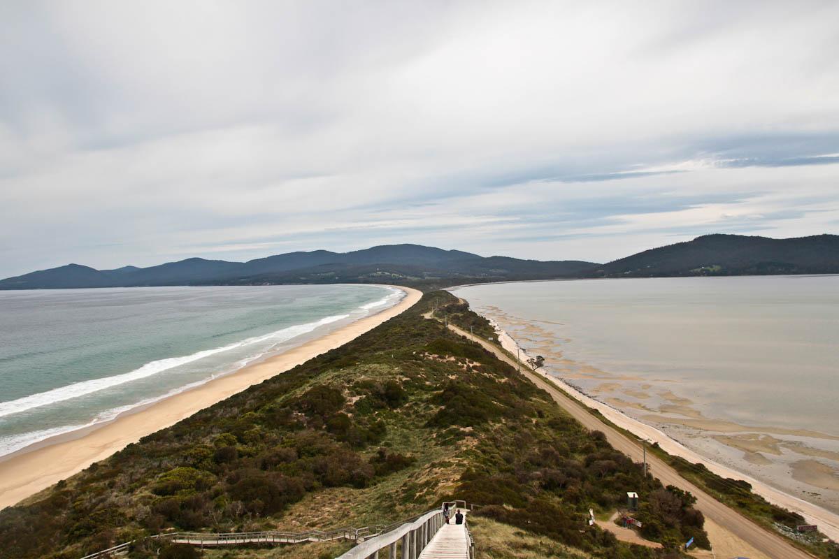 Bruny Island Tasmania Not Quite Nigella