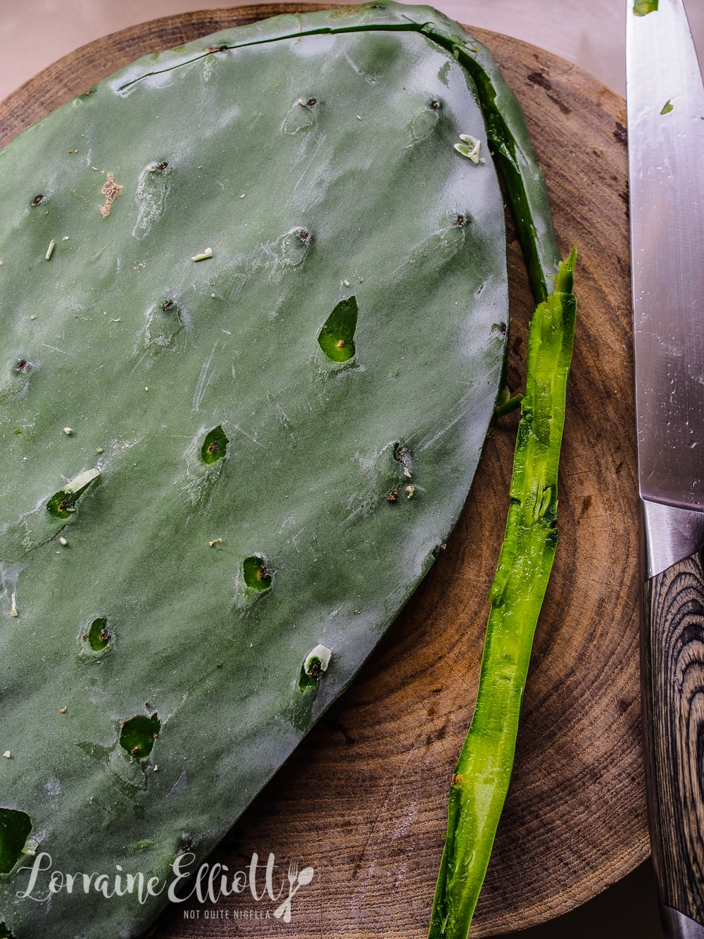 A Thorny Ingredient: Cactus or Nopales Tacos