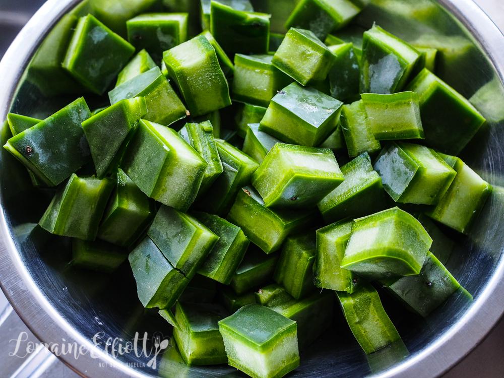 Cactus Pork Rib Stew