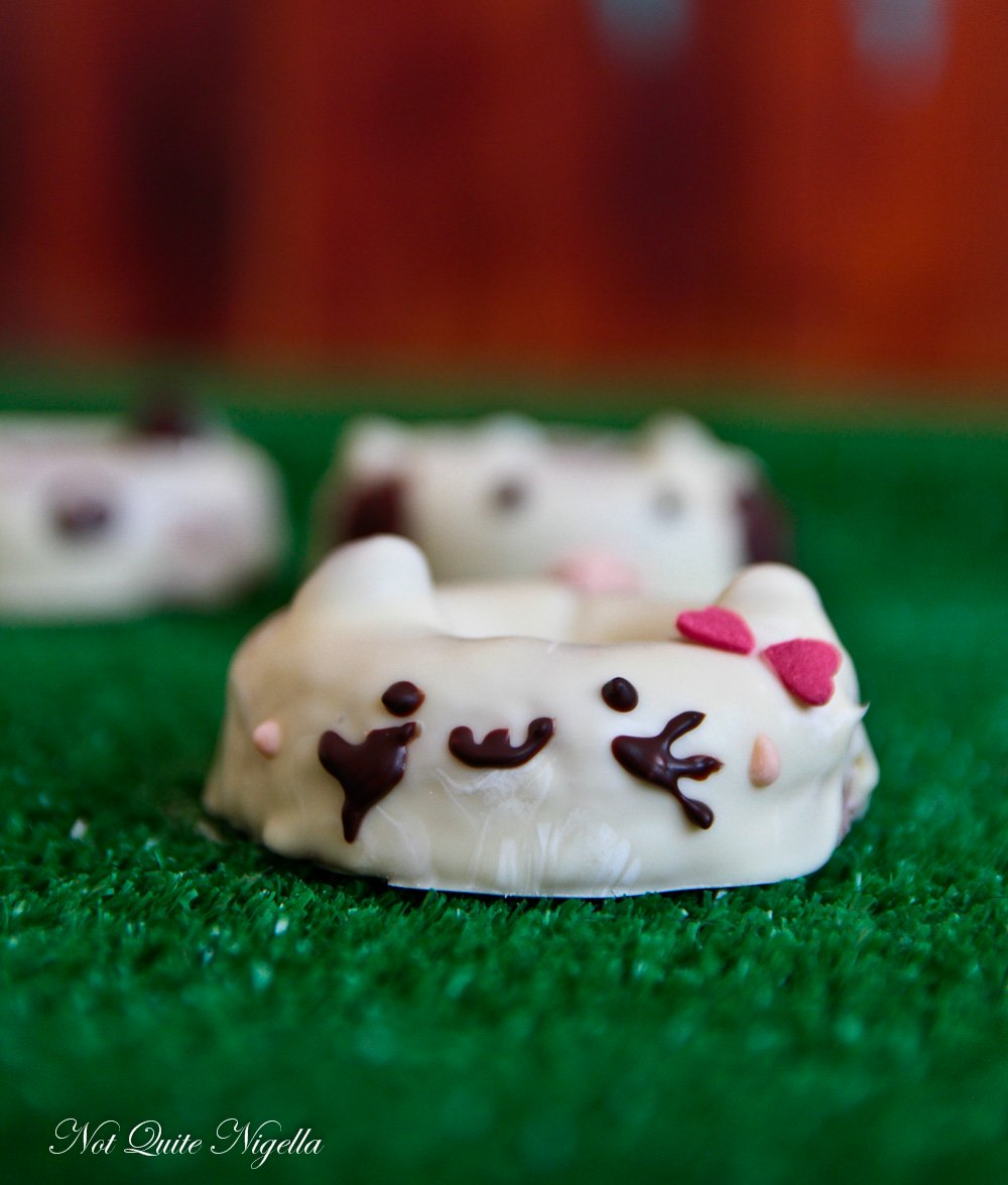 Cat Dog Animal Donuts