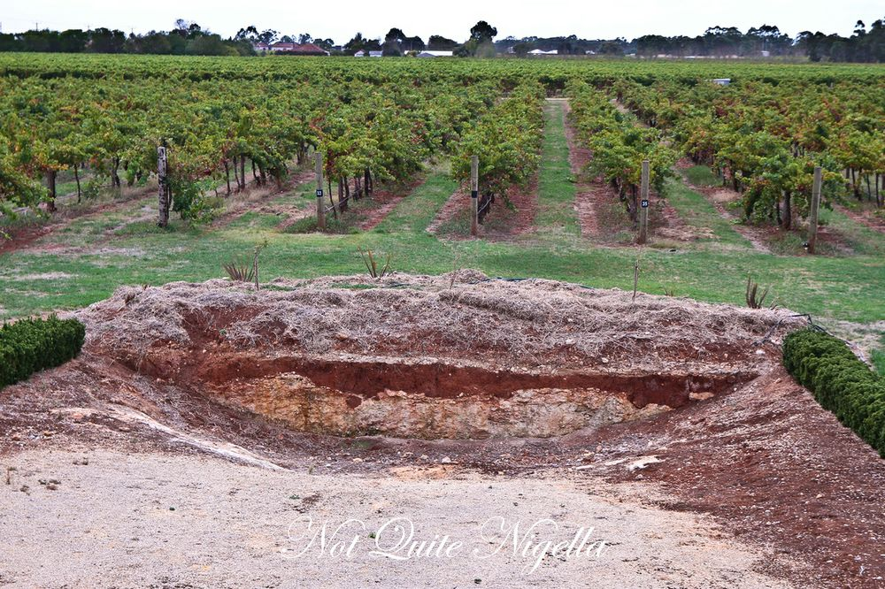 coonawarra penola south australia