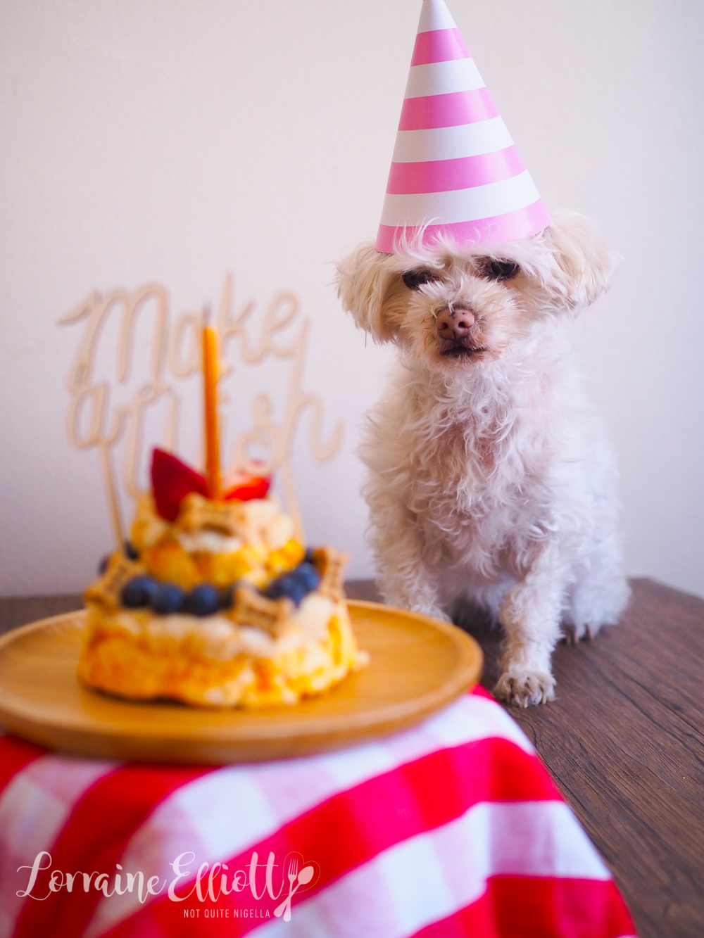 Easy Doggy Birthday Cake