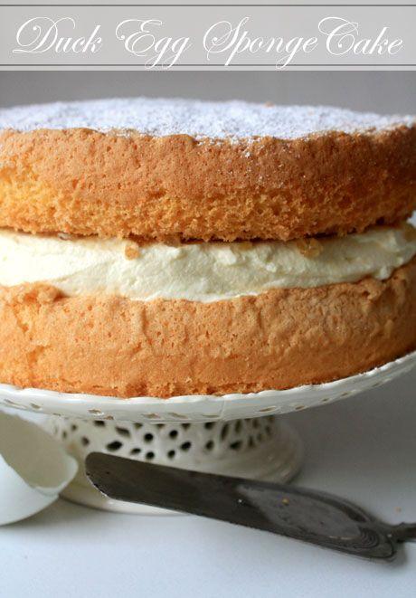 duck egg sponge cake 4