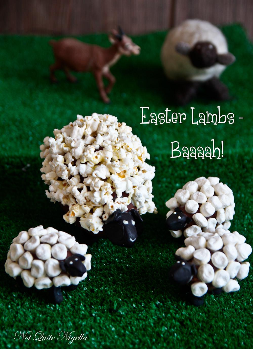 Chocolate Easter Lambs