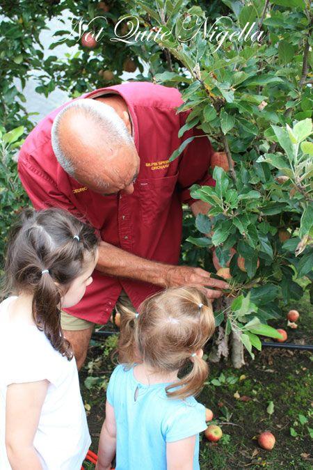 farmgate bilpin picking