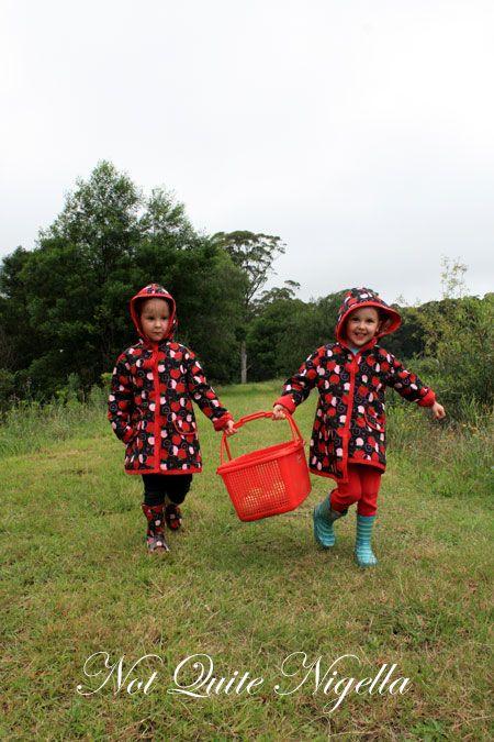 farmgate bilpin twins