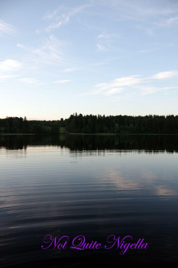 Vesanto view