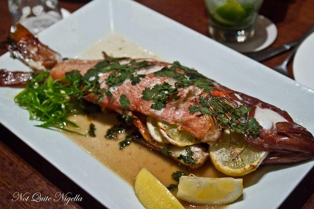 fish-d'vine-1