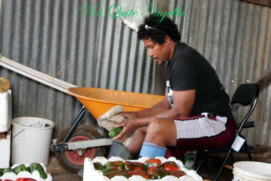 Fresh F&V from Field to Feast and a Hangi!