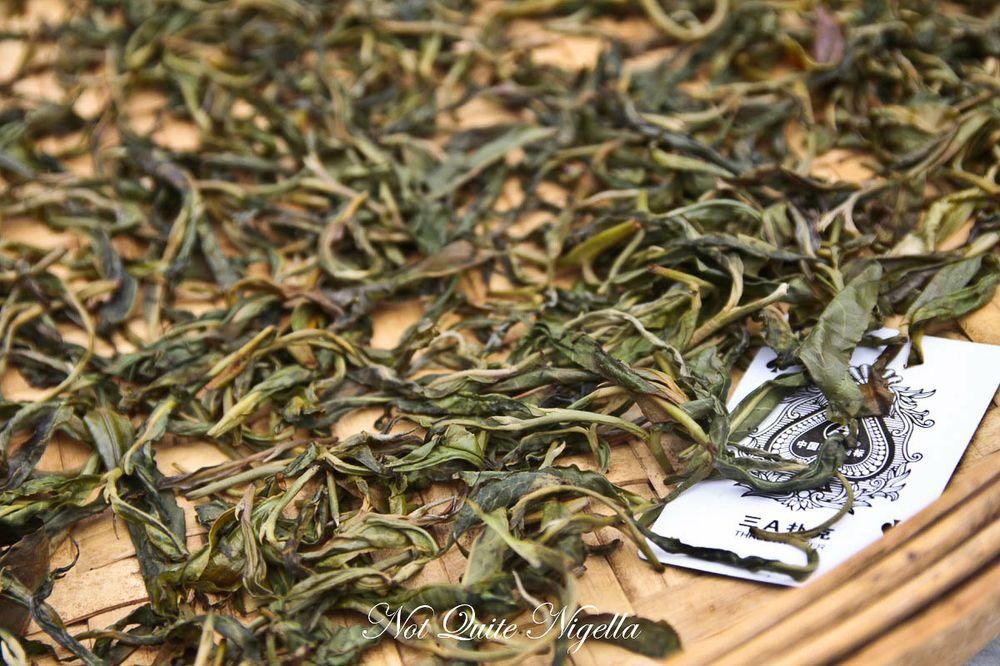 puer tea-8