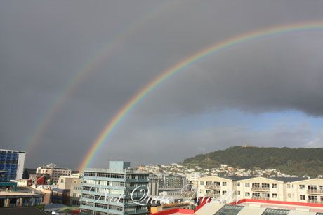 rainbow, wellington