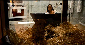 Lions, Tigers and Bears at Jamala Wildlife Lodge, Canberra!