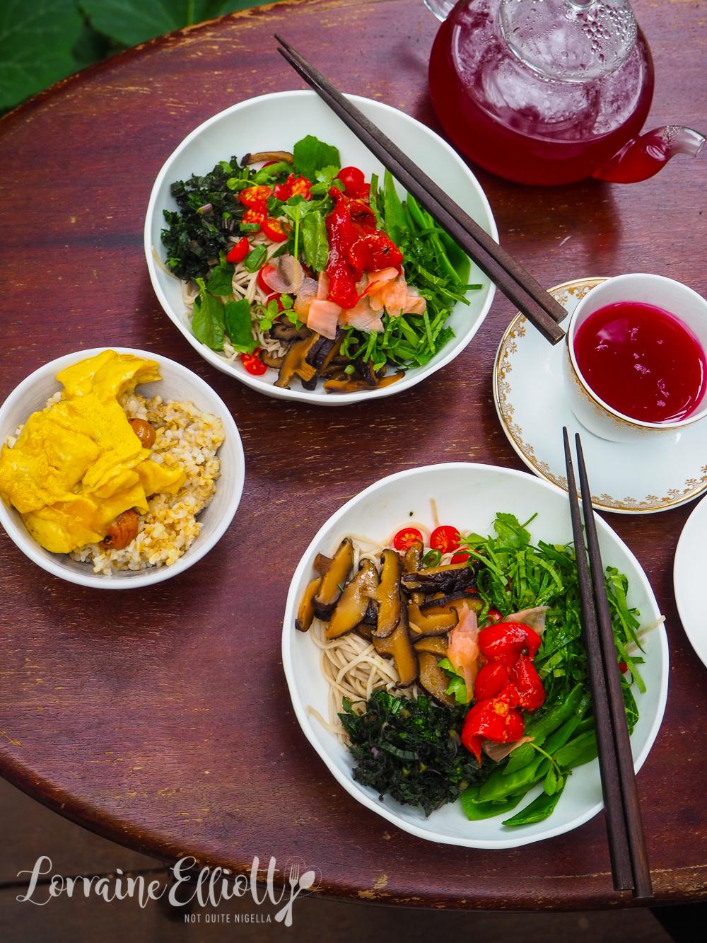 Japanese Vegan recipes
