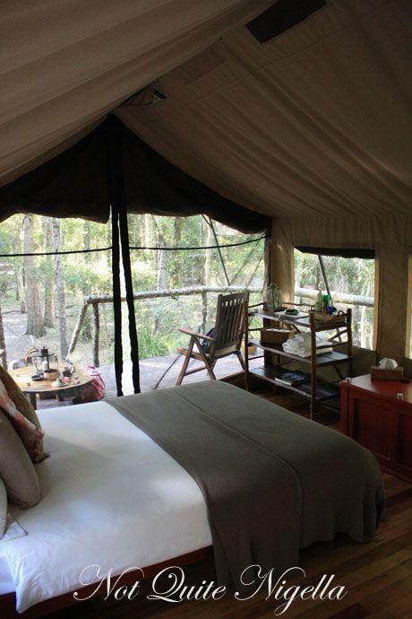 paperbark camp inside tent