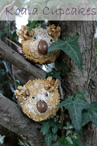 Koala Cupcakes - RSPCA Cupcake Day