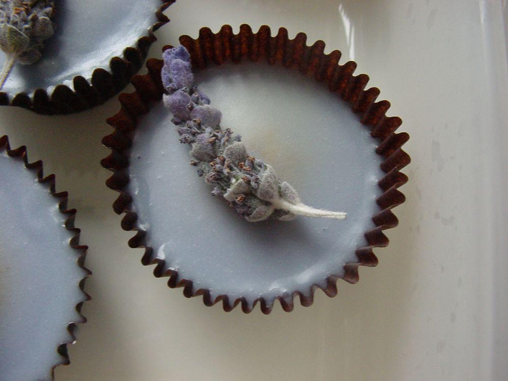 Lavender Trust Cupcakes by Nigella