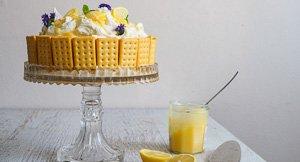Tart 'N Sweet Lemon Delicious Cheesecake