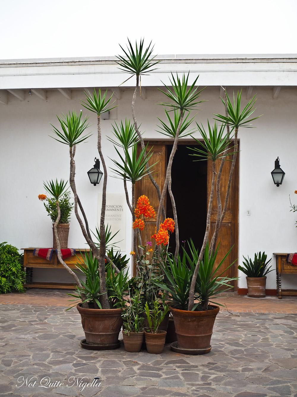 Lima Peru Food Tour