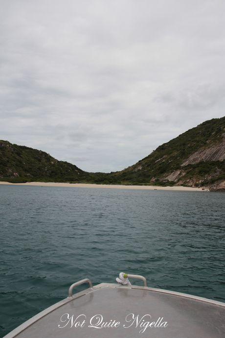 lizard-island