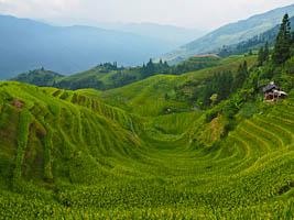 The Spectacular Longji Rice Terraces