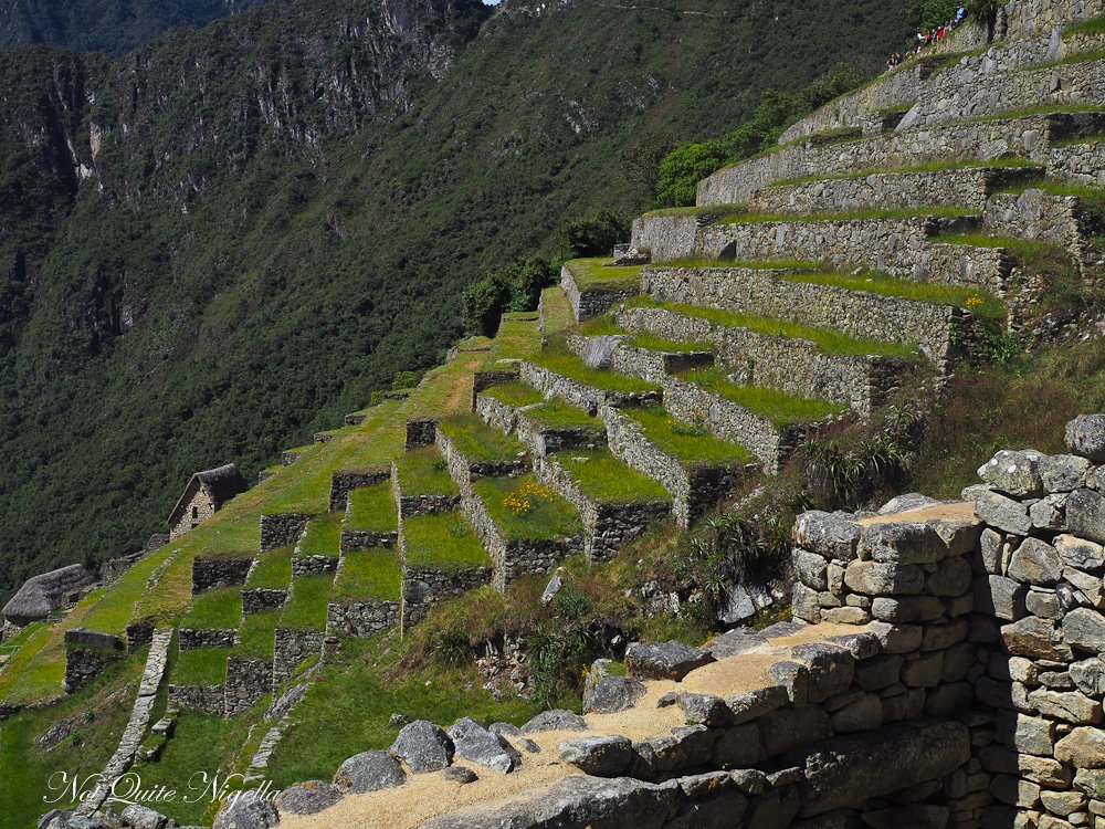 Machu Picchu Food Tour Peru