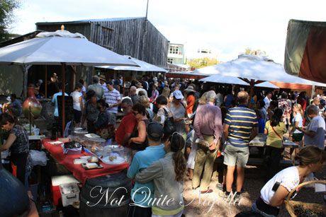 matakana farmers market, new zealand