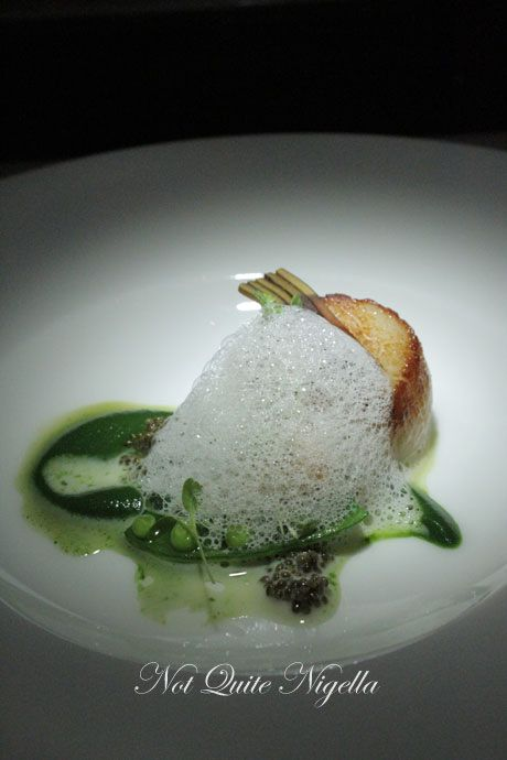 gordon ramsay, maze, melbourne, review, scallop