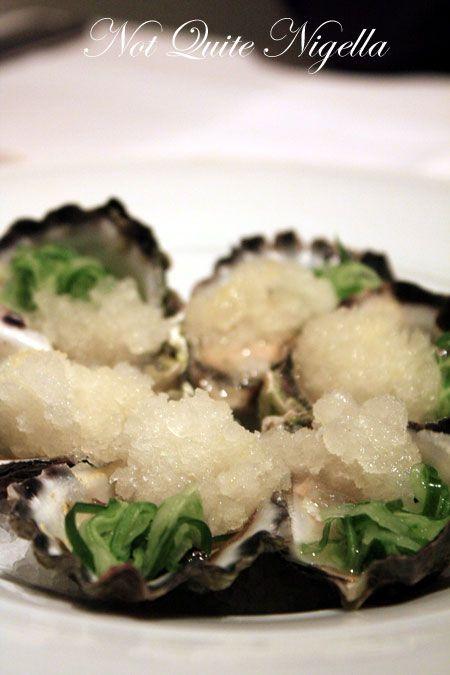 lolli redini orange oysters
