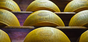 The King of Cheese: Parmigiano-Reggiano