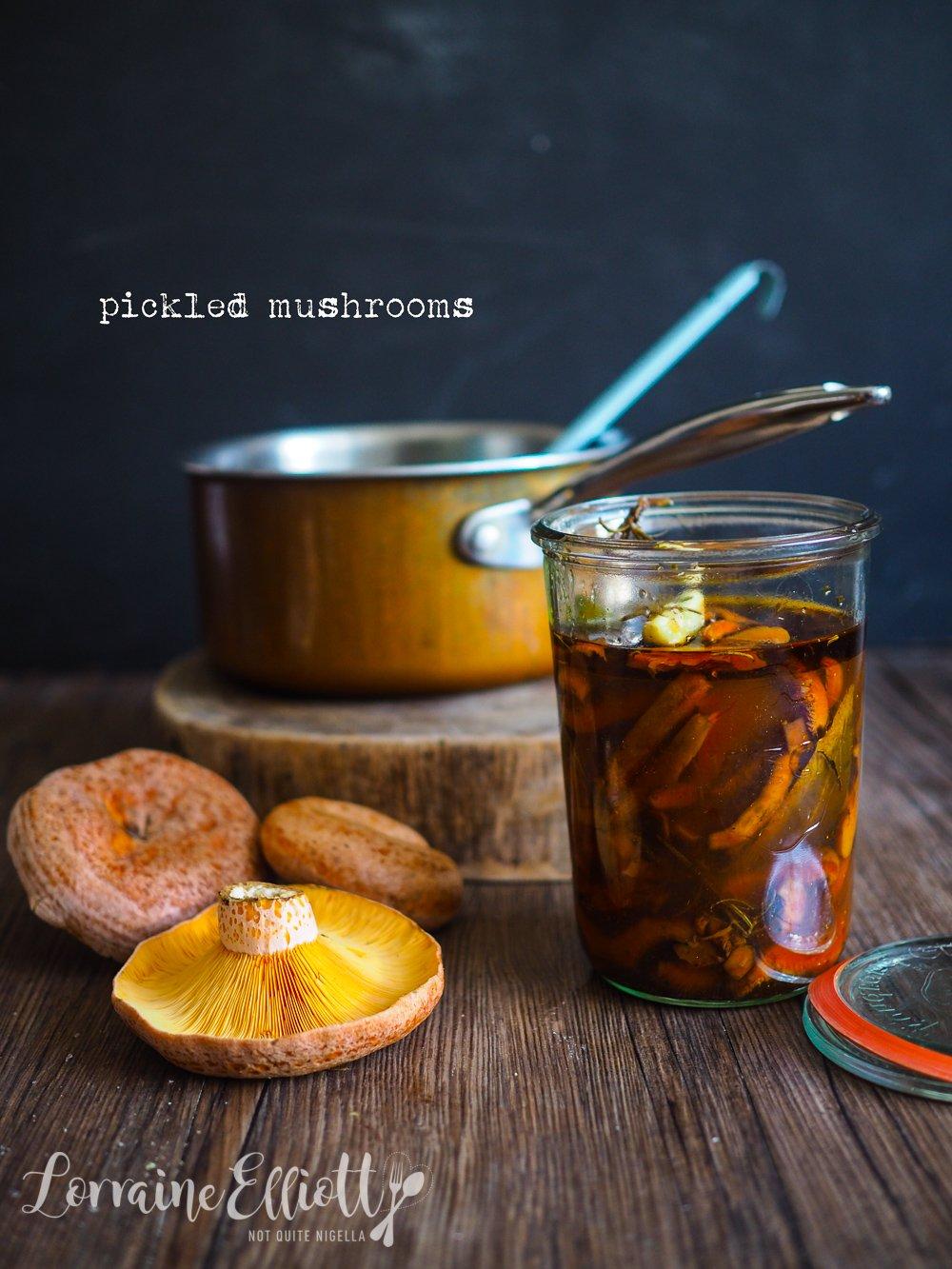 Pickled Mushrooms Saffron Milk Cap