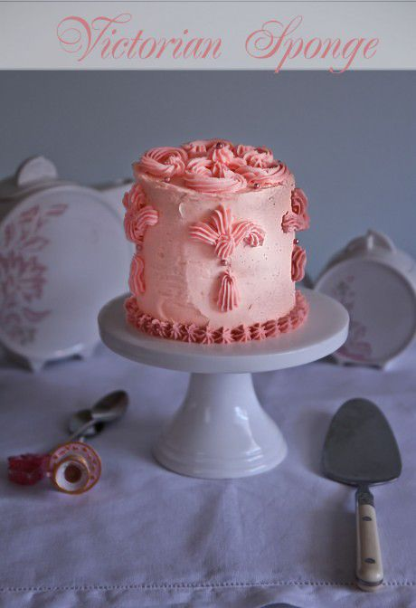 Pink Victorian Scroll Sponge