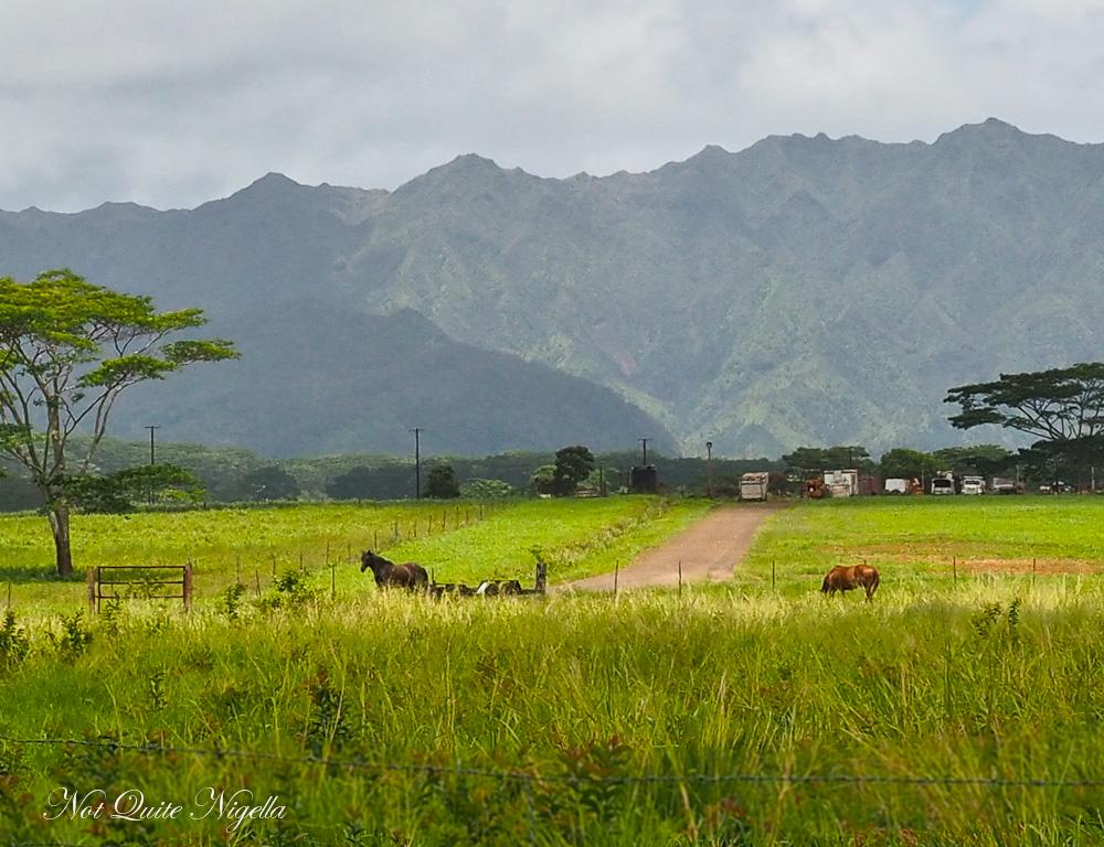 Princeville Kauai