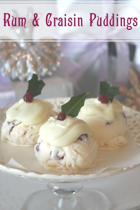 Rum & Craisin Christmas Ice Cream Puddings