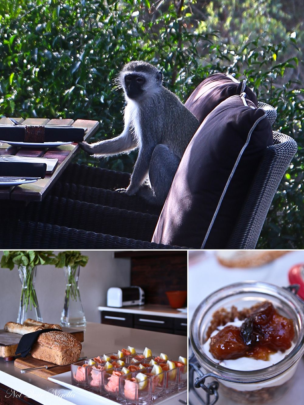 A Food & Animal Safari at Phinda, South Africa