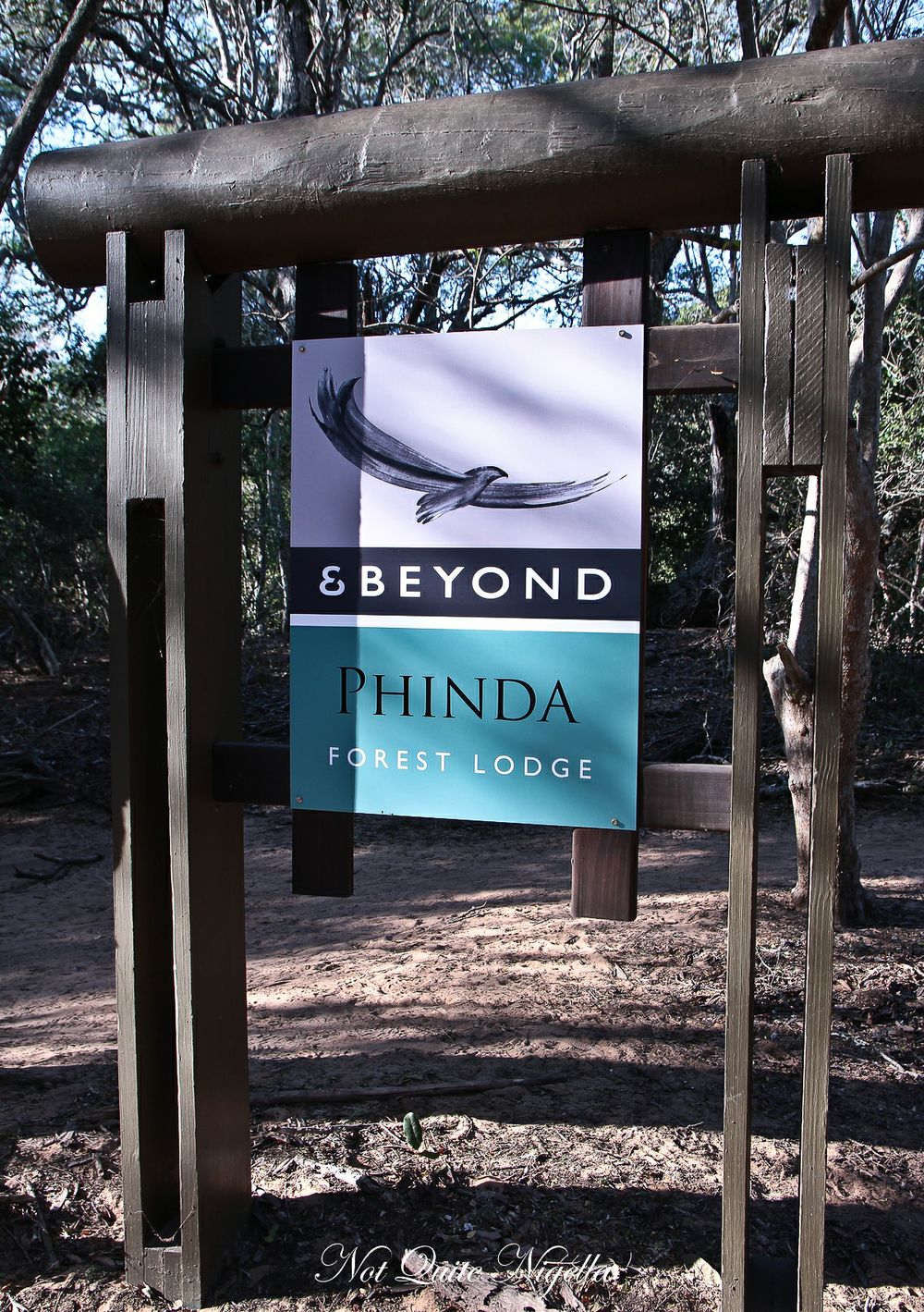 phinda south africa