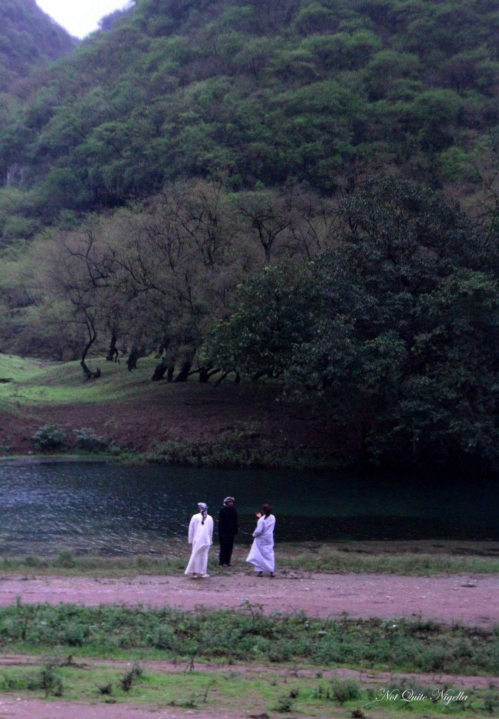 Surprising Salalah, Oman